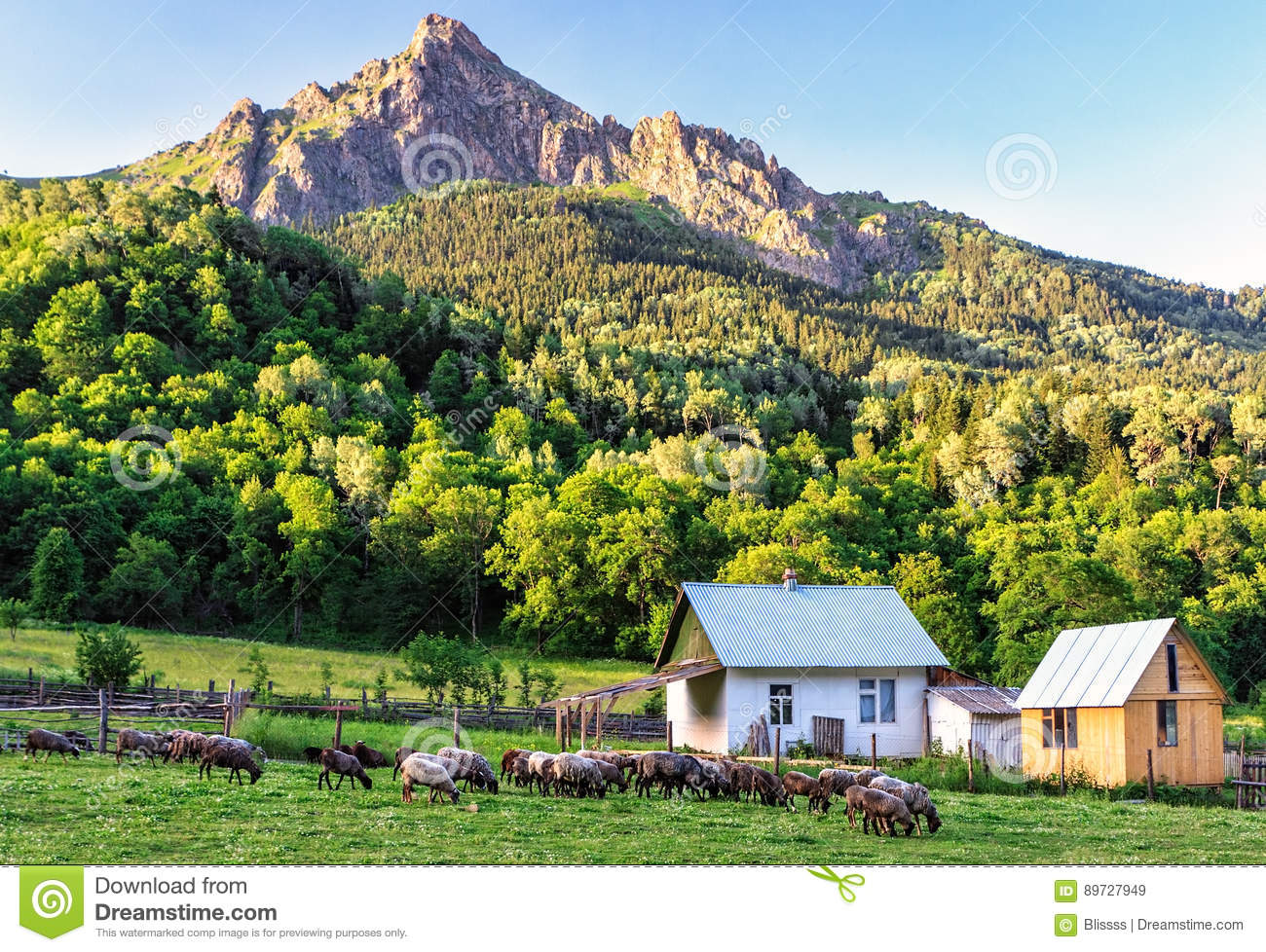 Scenic Rustic Landscape Of Peaceful Countryside Life With Sheep