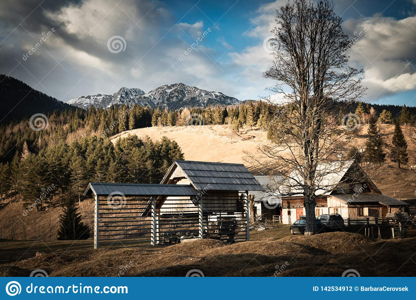 Scenic view in alpine forest mountains with isolated wooden chalet house in idyllic sunny winter environment, pokljuka, slovenia