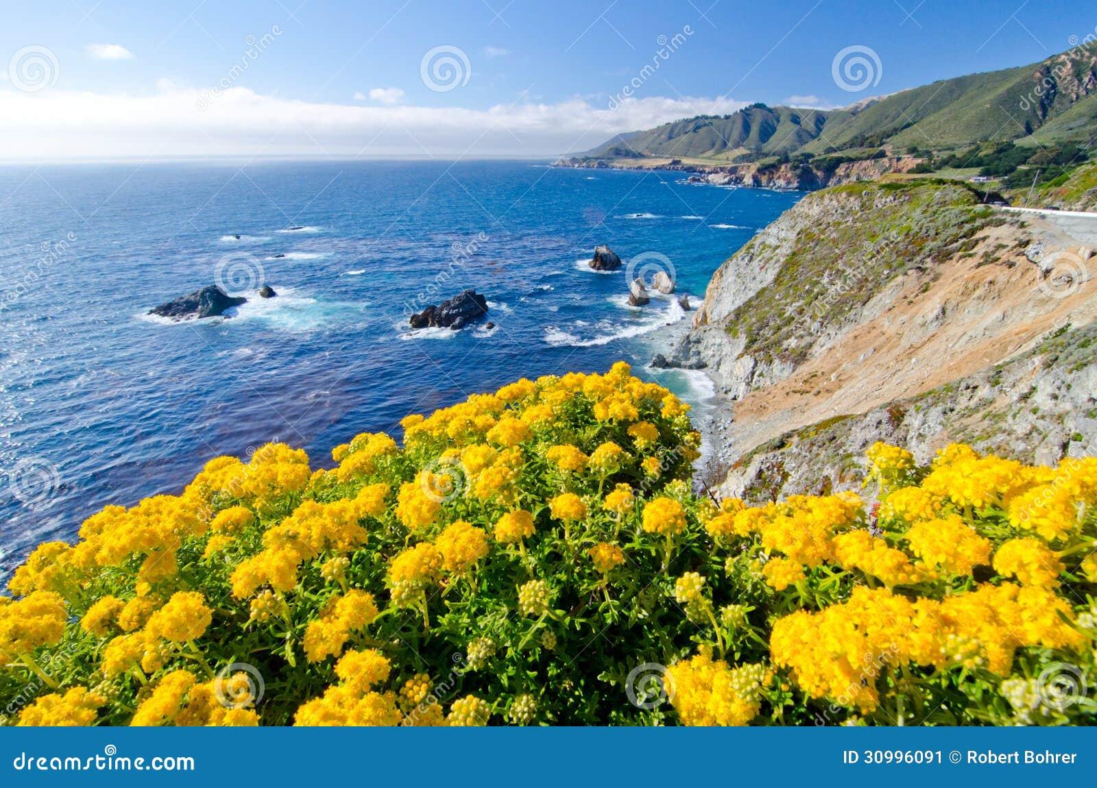 Scenic Vista On California State Route 1 Stock Image