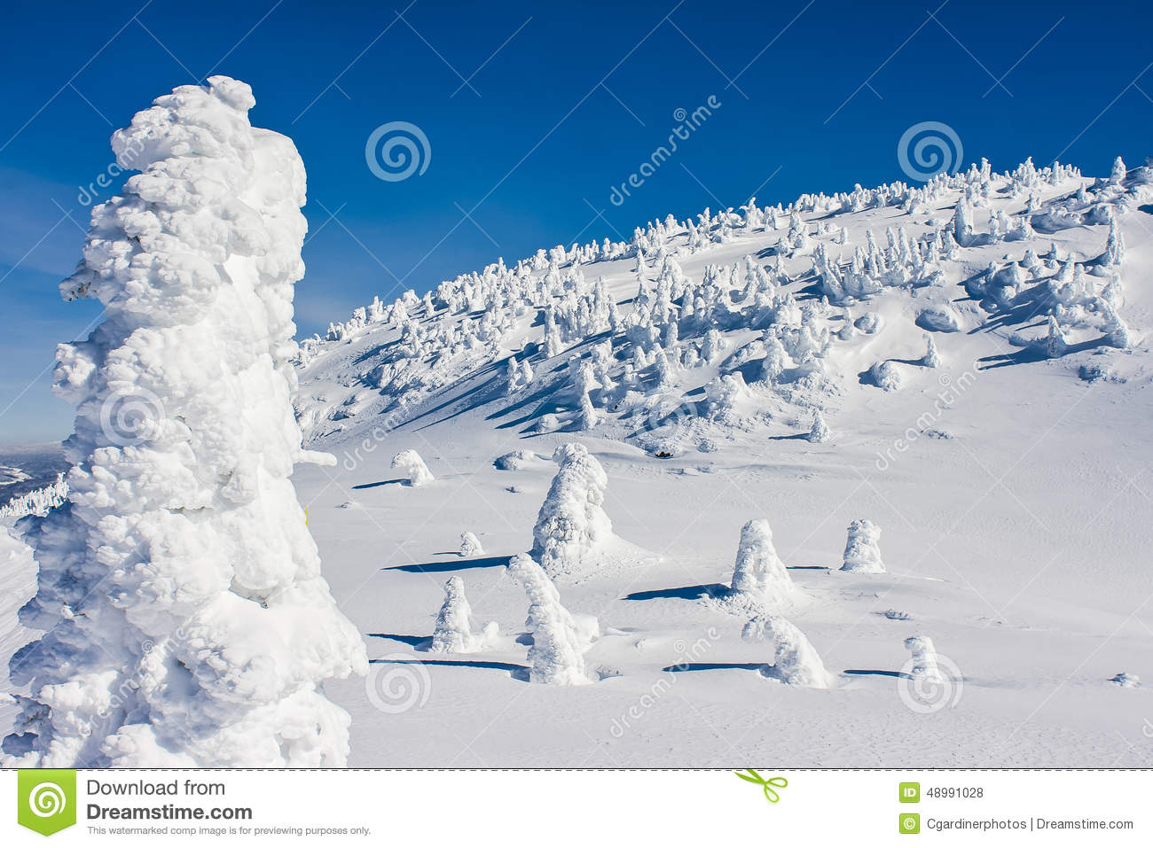 Image result for clear blue sky after a fresh snowfall