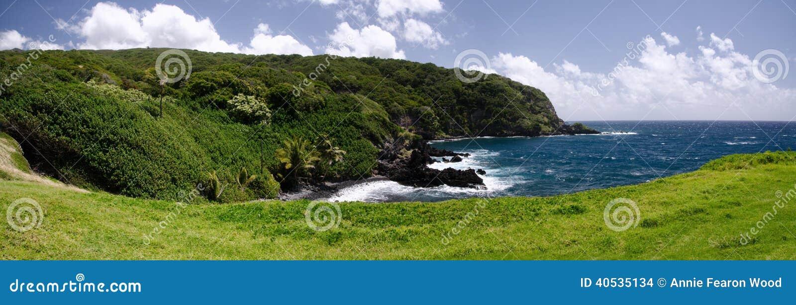 Sceniczna Maui wyspy linia brzegowa, Hawaje