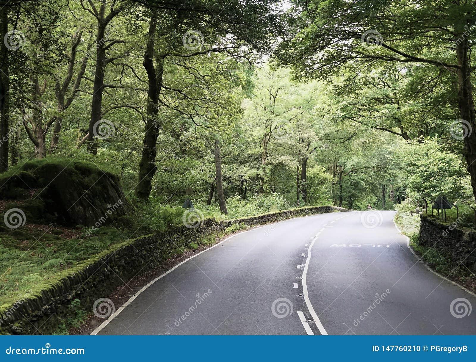 Sceniczna wiejska droga w Północnym Anglia jeziora okręgu