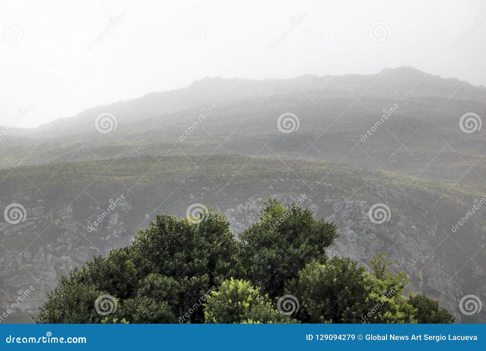 Sceniczne Clarence przejażdżki góry między Gordon ` s zatoką i Rooiels w Zachodnim przylądku, Południowa Afryka