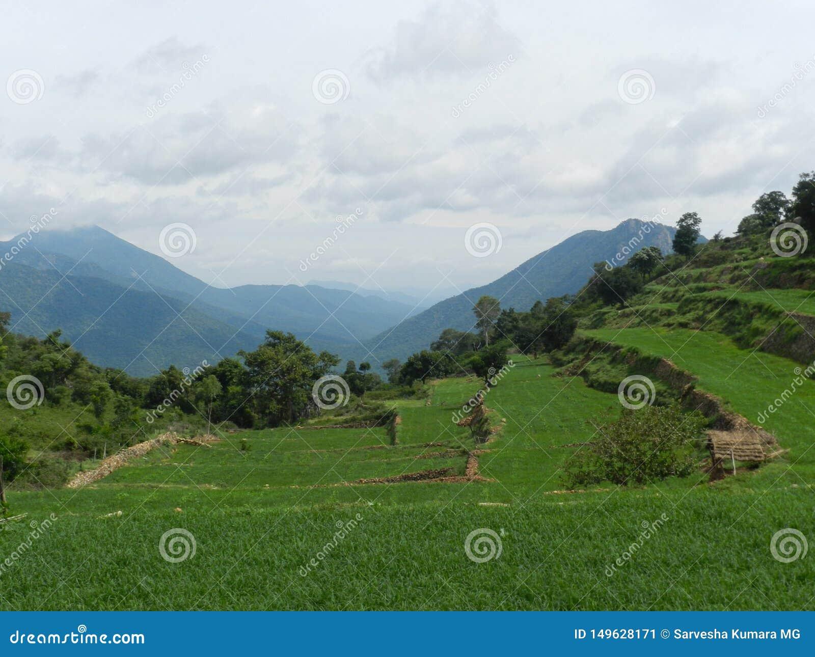Sceniczny piękno krajobrazy