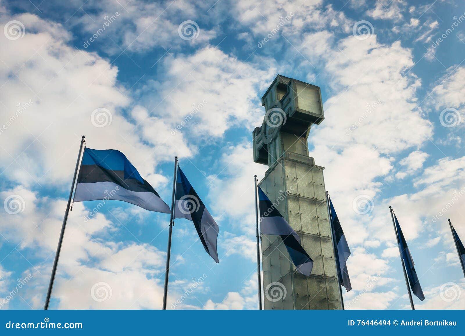 Sceniczny widok krzyż swoboda Vabadusrist i estonian flaga przy zmierzchem
