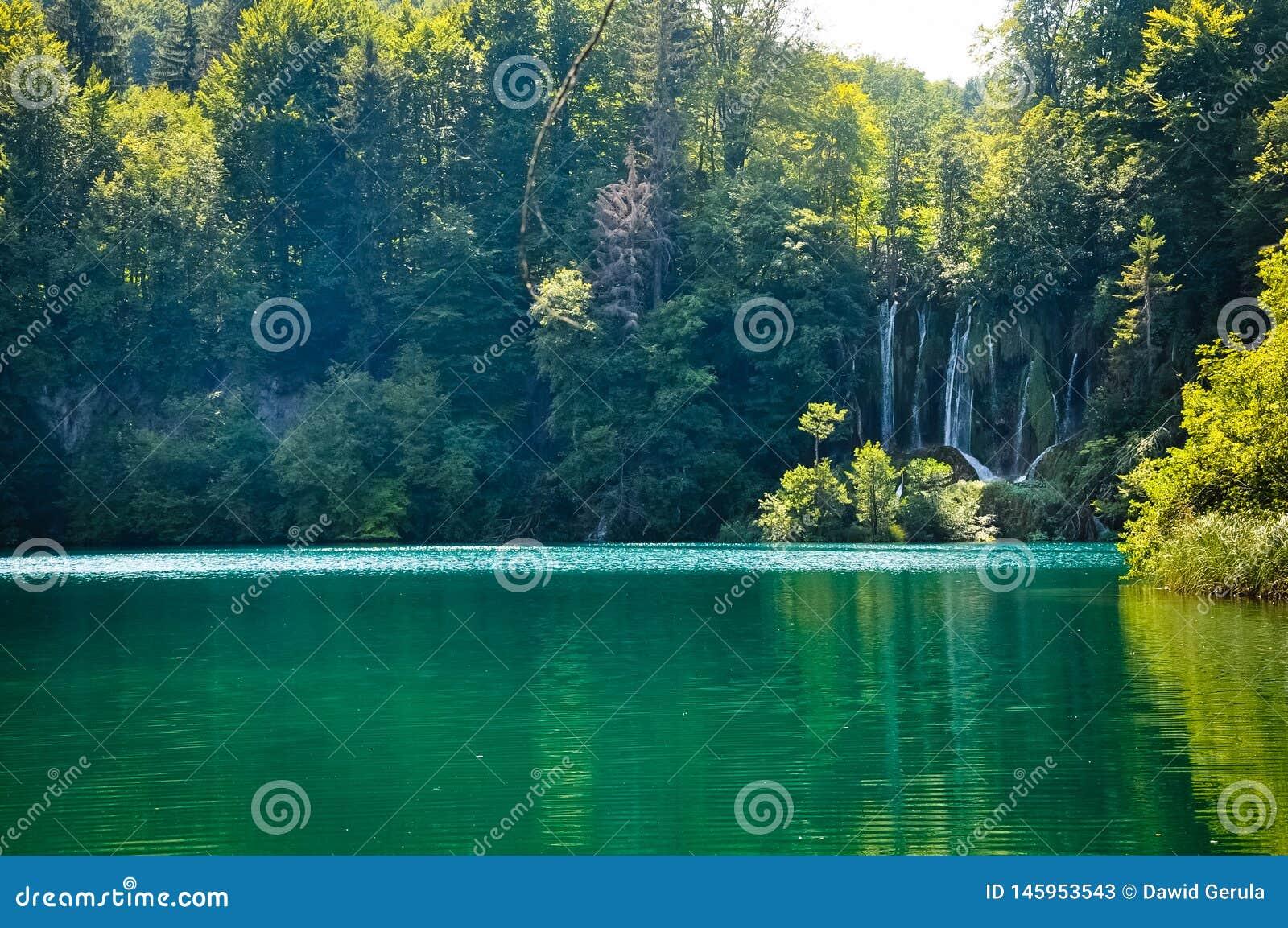 Sceniczny widok siklawy w Plitvice jeziorach parki narodowi, Chorwacja