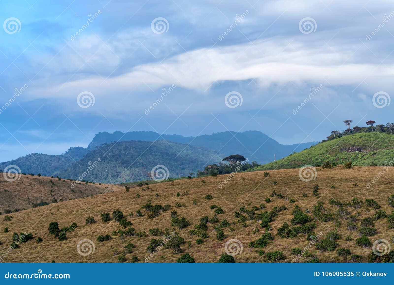Sceniczny widok w Horton równinach, Sri Lanka
