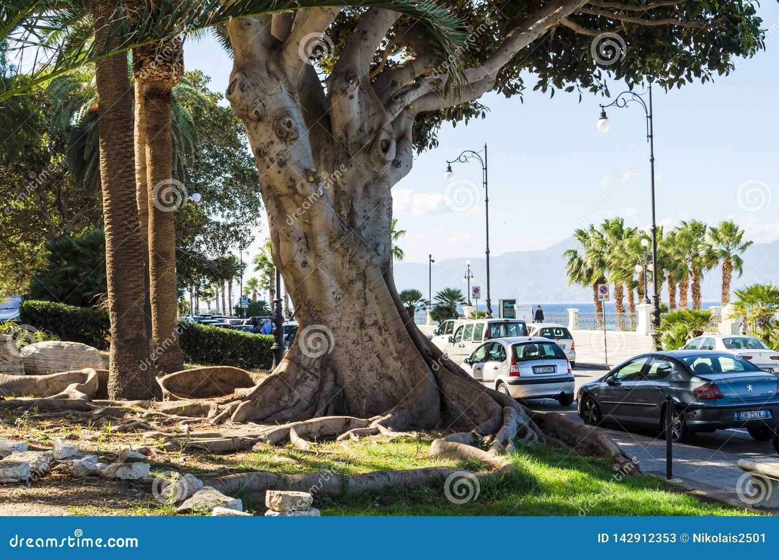 Scenisk sikt av den Reggio Di Calabria promenaden Lungomare Falcomata