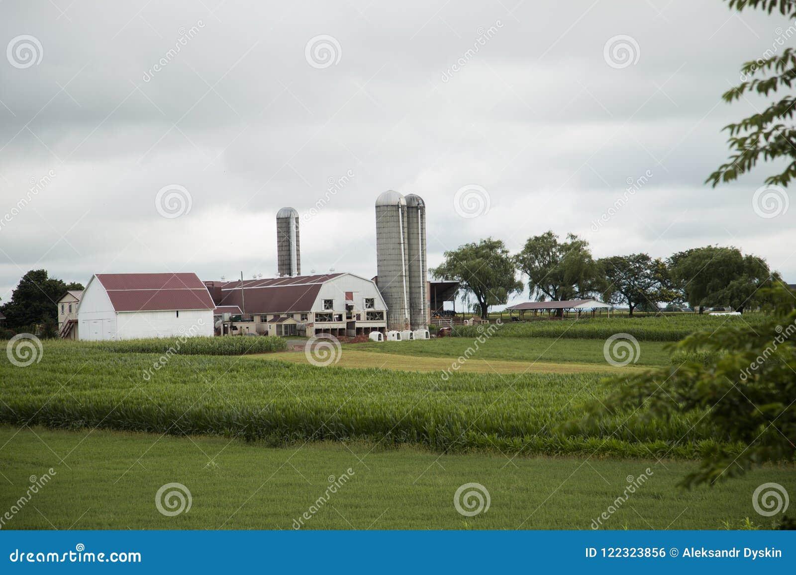 Scenisk sikt av lantgården i det Amish landet, Pennsylvania