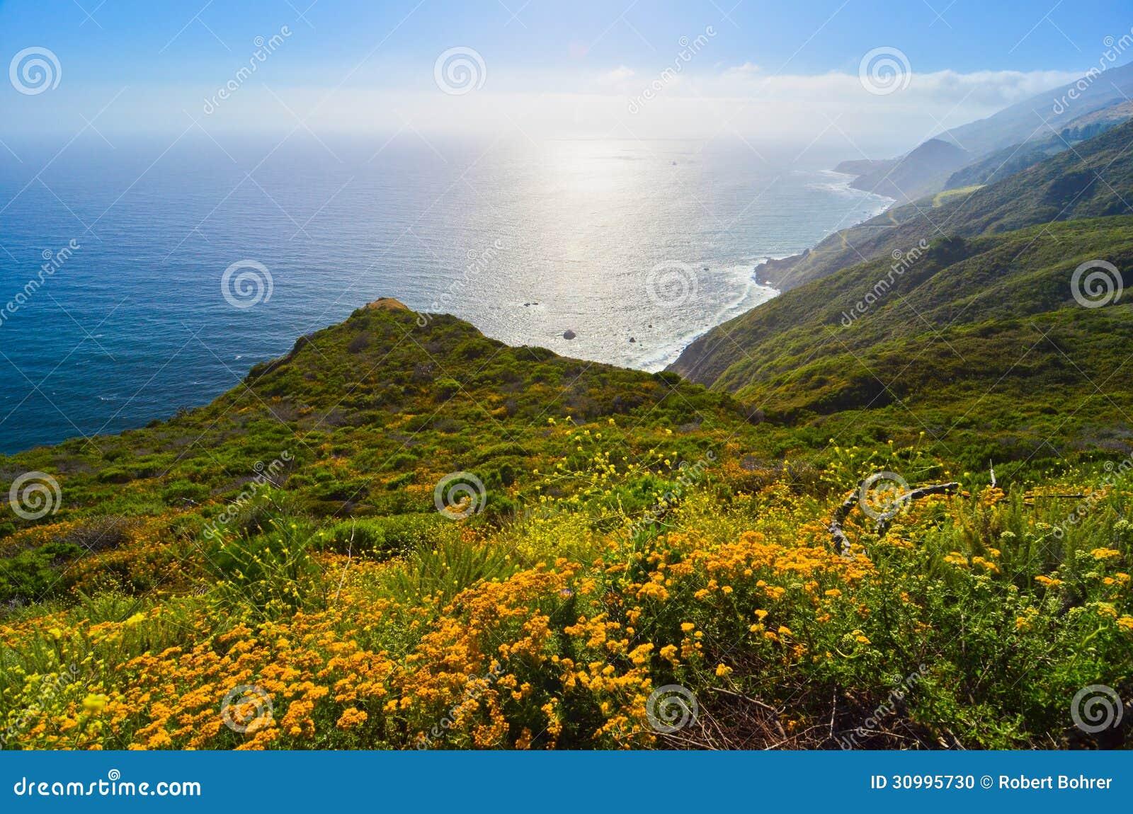 Scenisk utsikt på Kalifornien statrutt 1