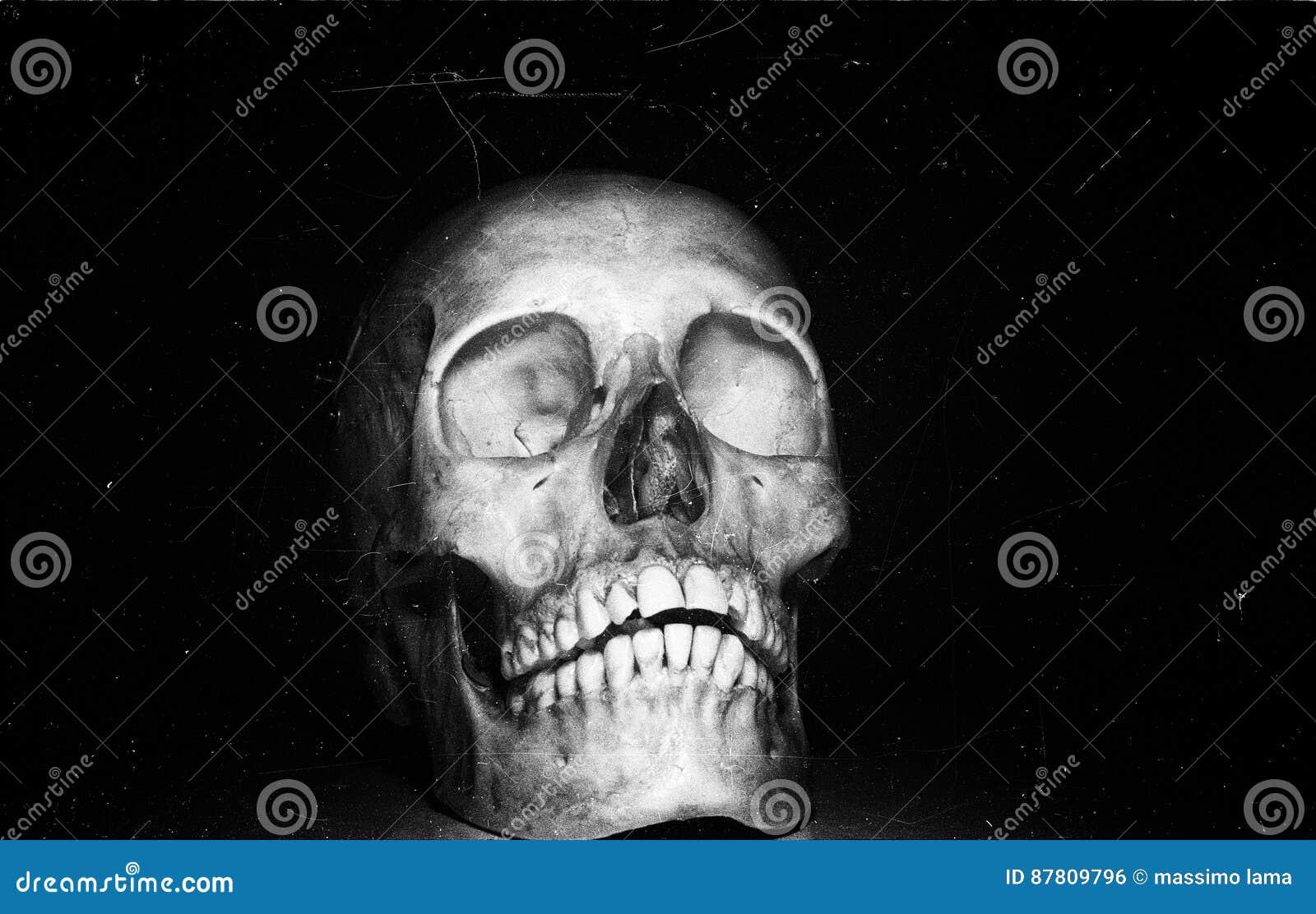 Schädel auf schwarzem backround