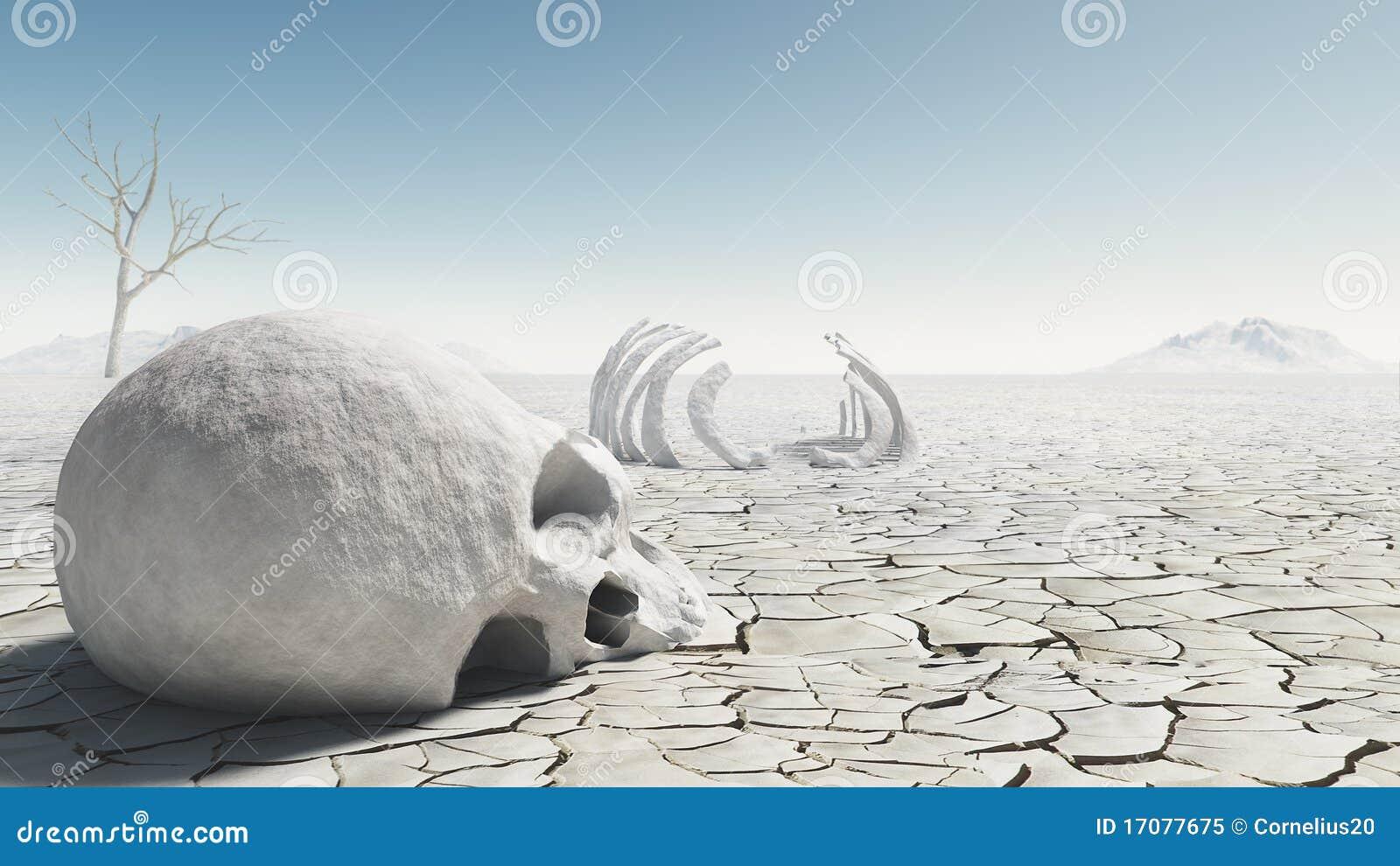 Schädel in der Wüste