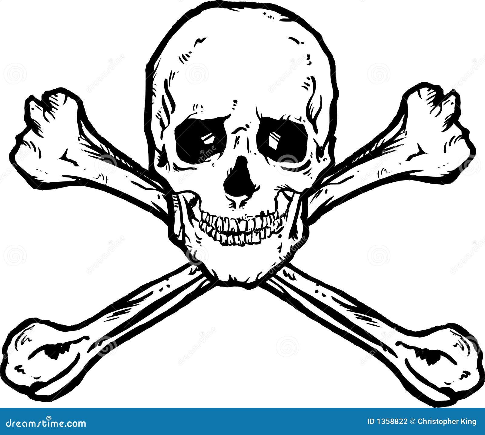 Fantastisch Kompakte Knochen Bilder - Menschliche Anatomie Bilder ...
