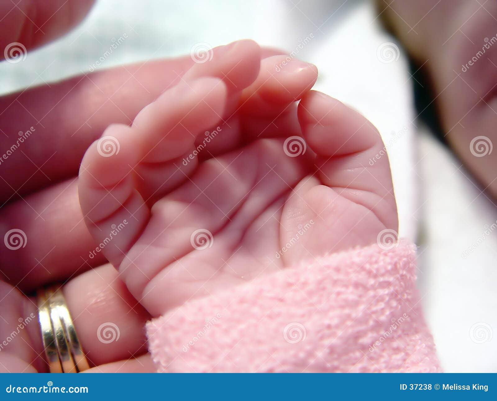 Schätzchen wenig Hand