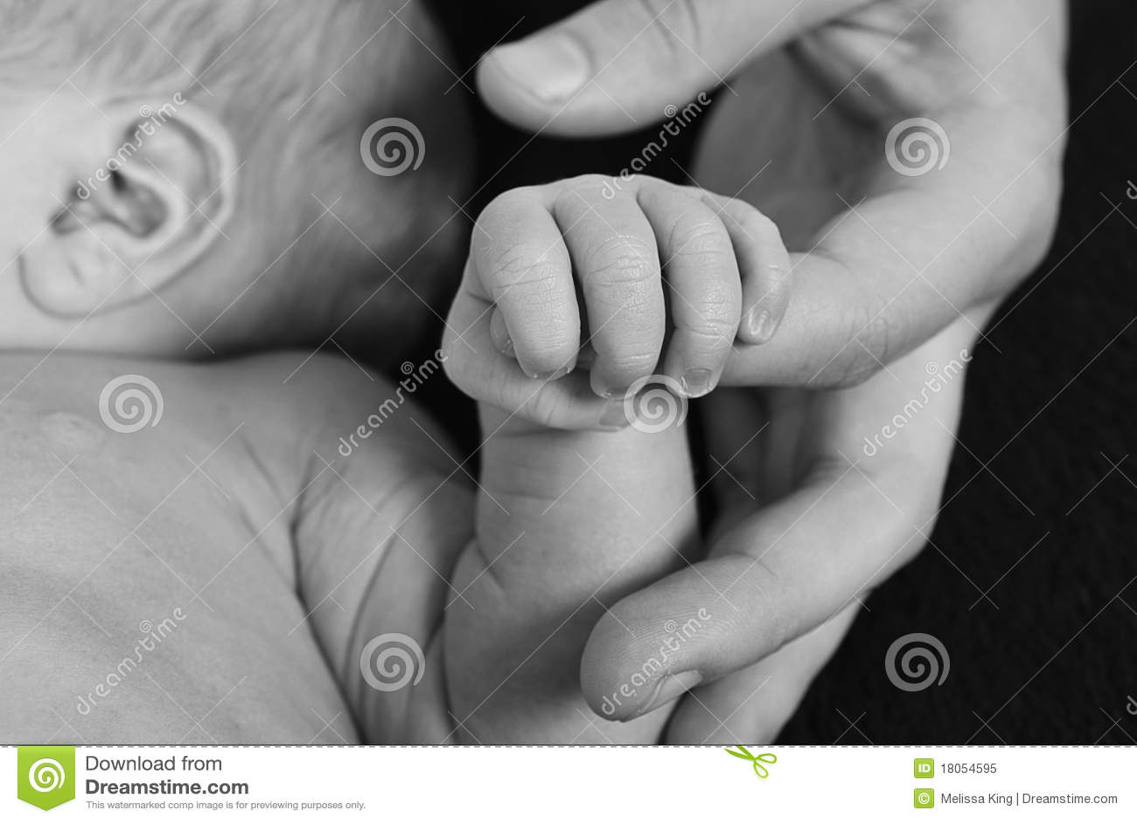 Schätzchenholdingfinger der Muttergesellschafts