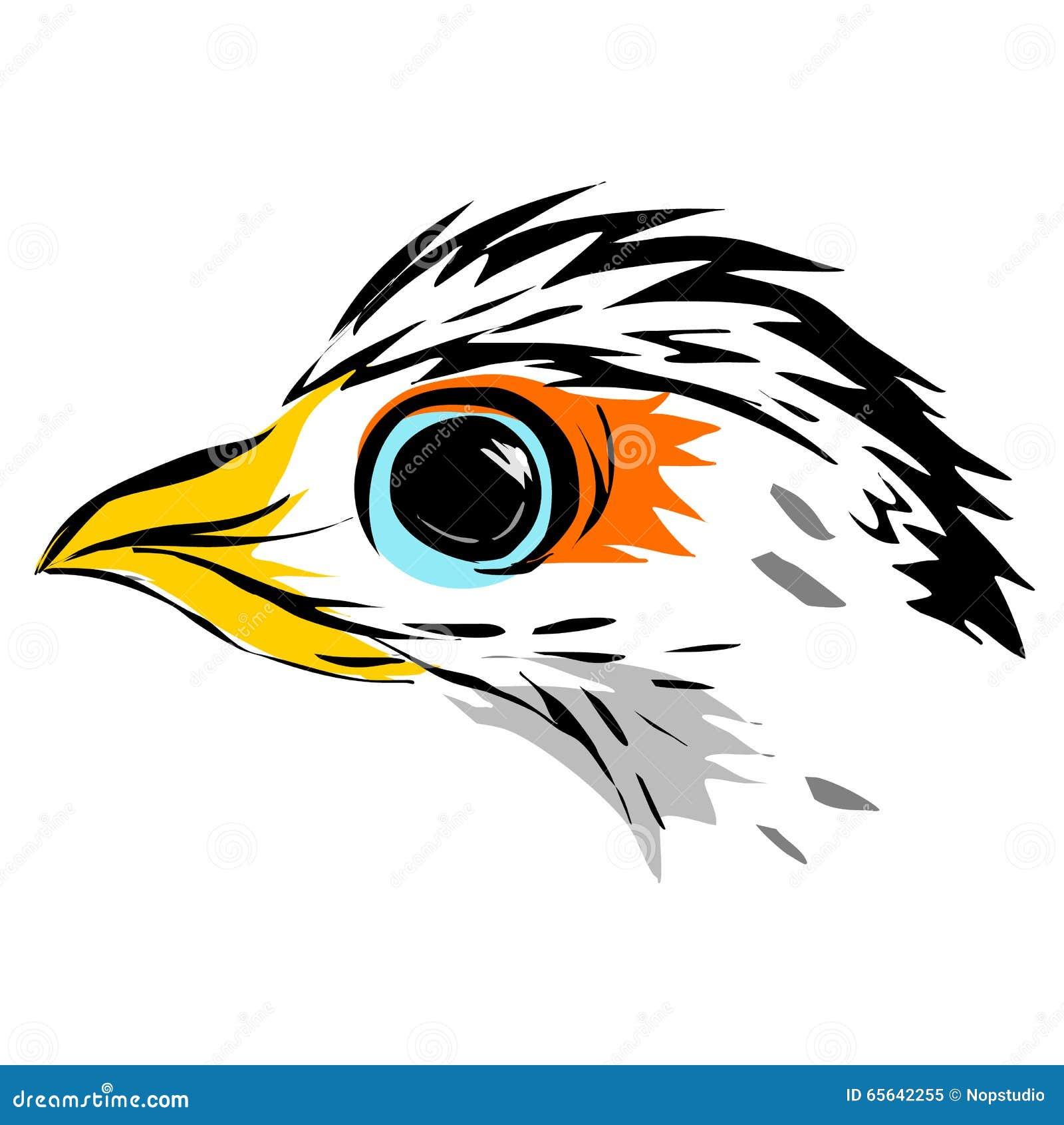 Schéma d aigle