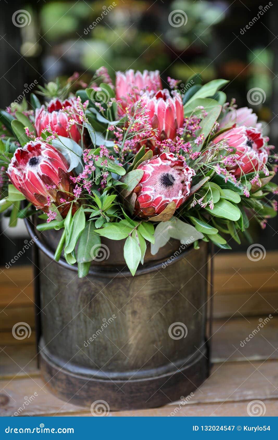 Schöne Anordnung der frischen Blume für Protea macrocephala Blumen