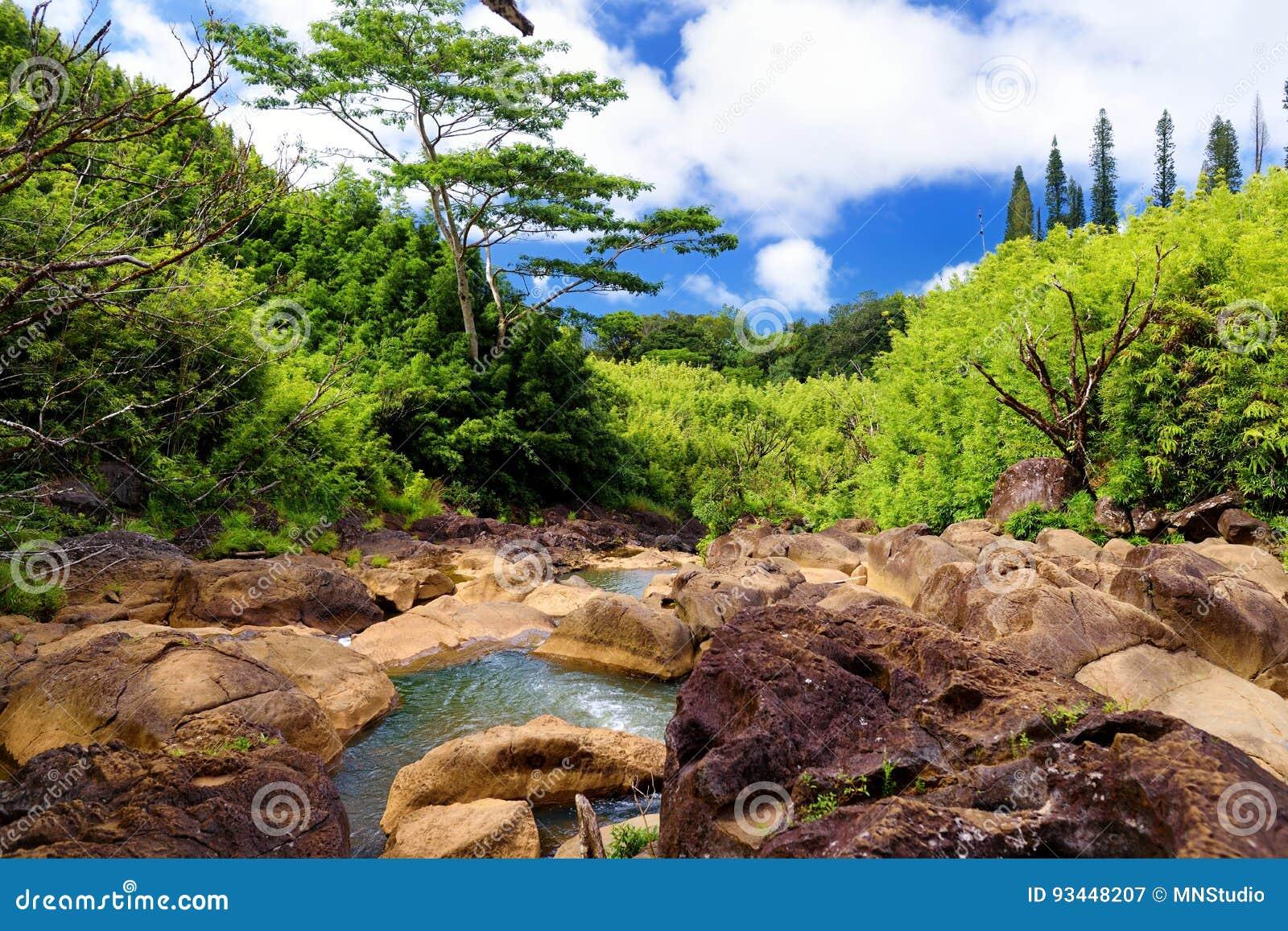 Schöne Ansicht eines Stromes, der zwischen Felsen, gelegen an berühmter Straße zu Hana auf Maui-Insel, Hawaii fließt