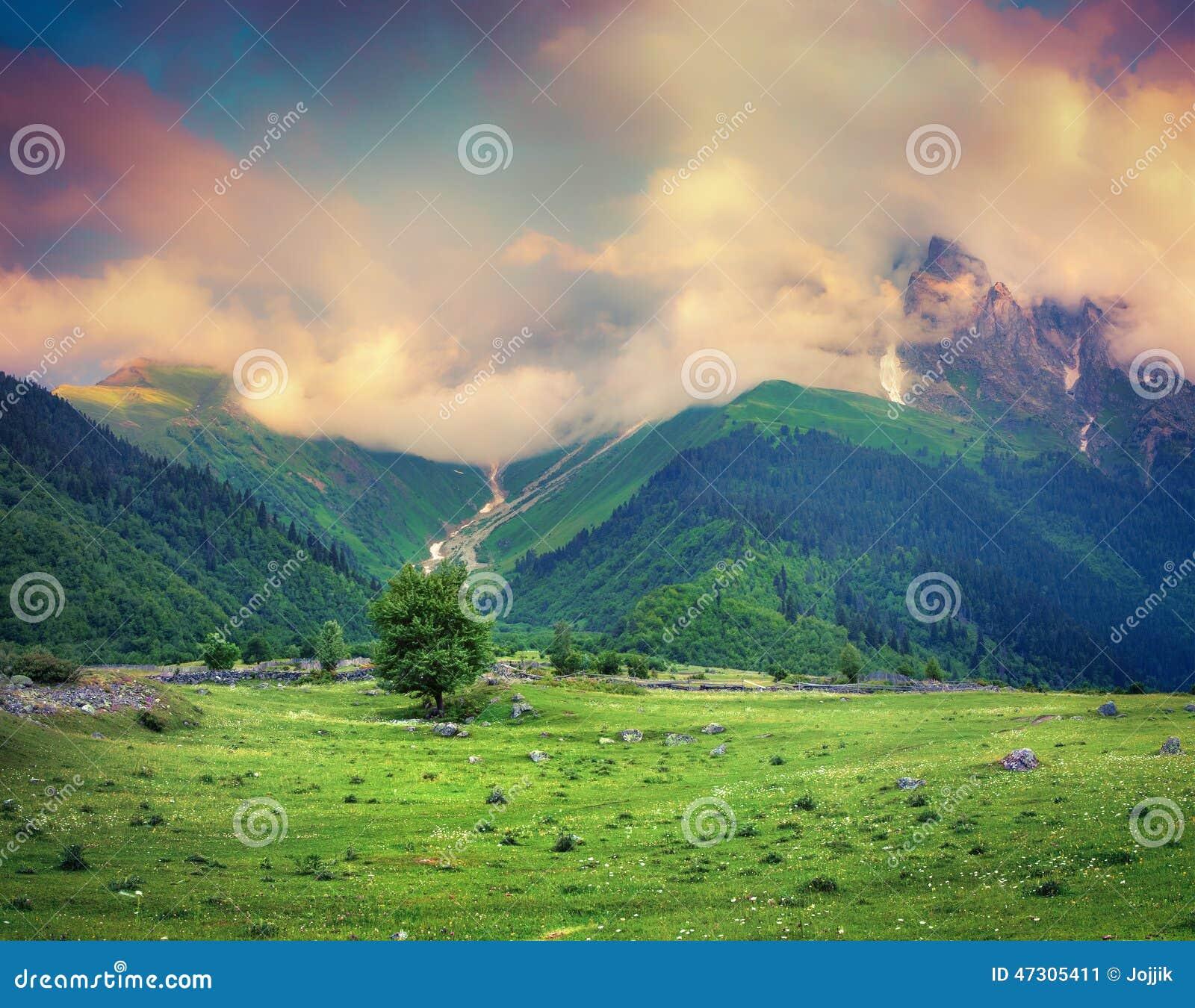 Schöne Ansicht von Alpenwiesen bei nebeligem Sonnenaufgang