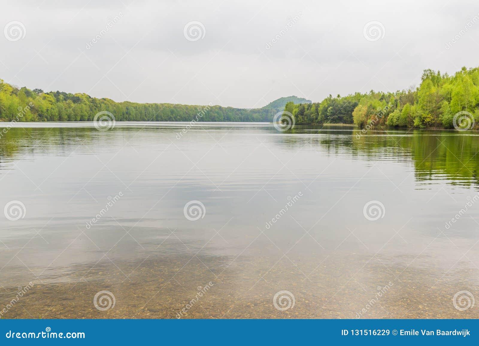 Schöne Ansicht von einem See mit vielen Bäumen und einem grauen Himmel