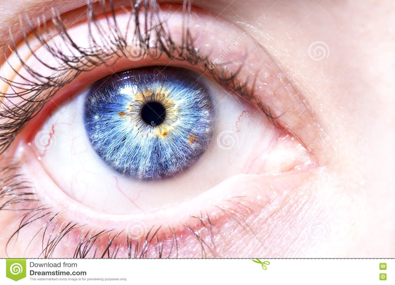 Schöne blaue Augen stockbild. Bild von augen, blaue, schöne - 3
