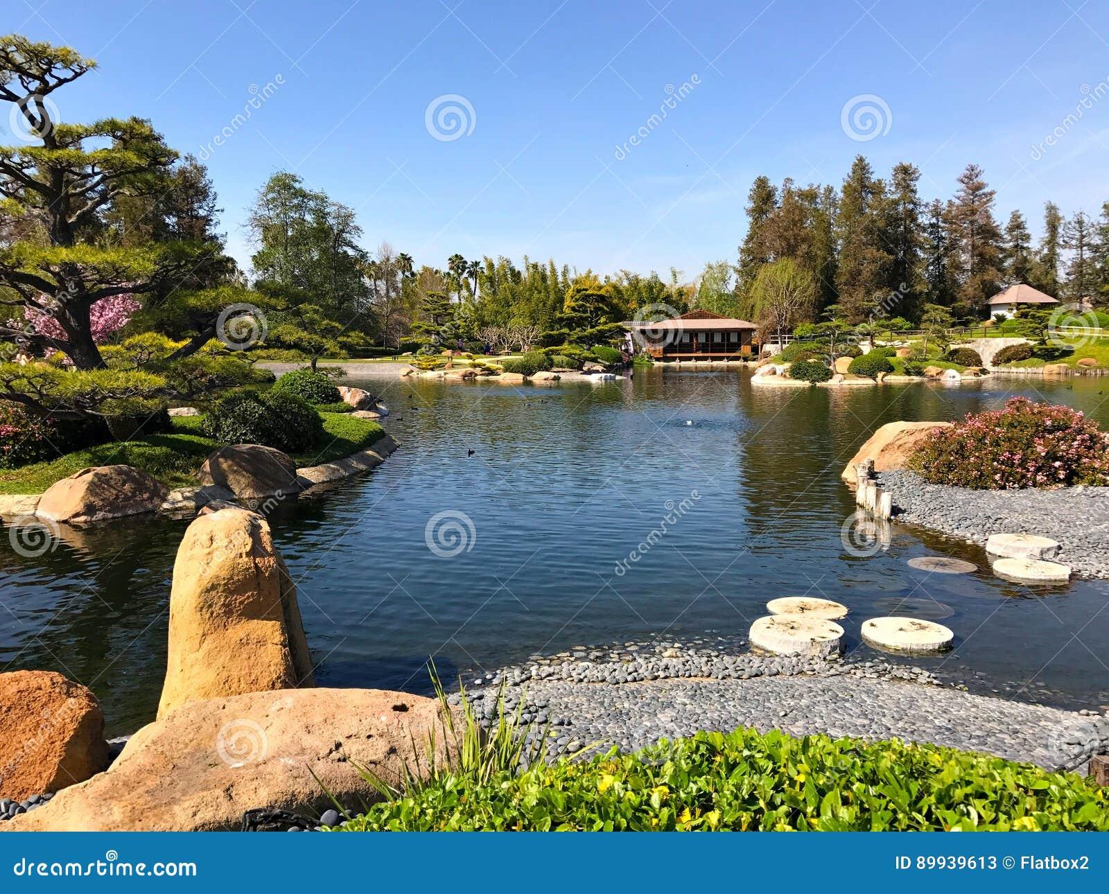 Schöne Blumen Und Bäume Im Japanischen Garten Stockbild - Bild von ...