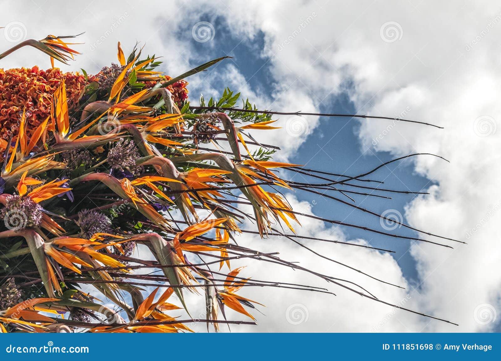 Schöne Blumenanordnung mit vielen Farben