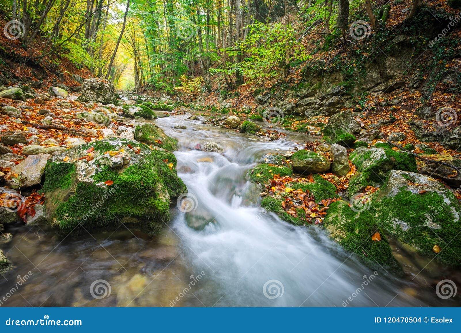 Schöne Herbstlandschaft mit Gebirgsfluss, Steine