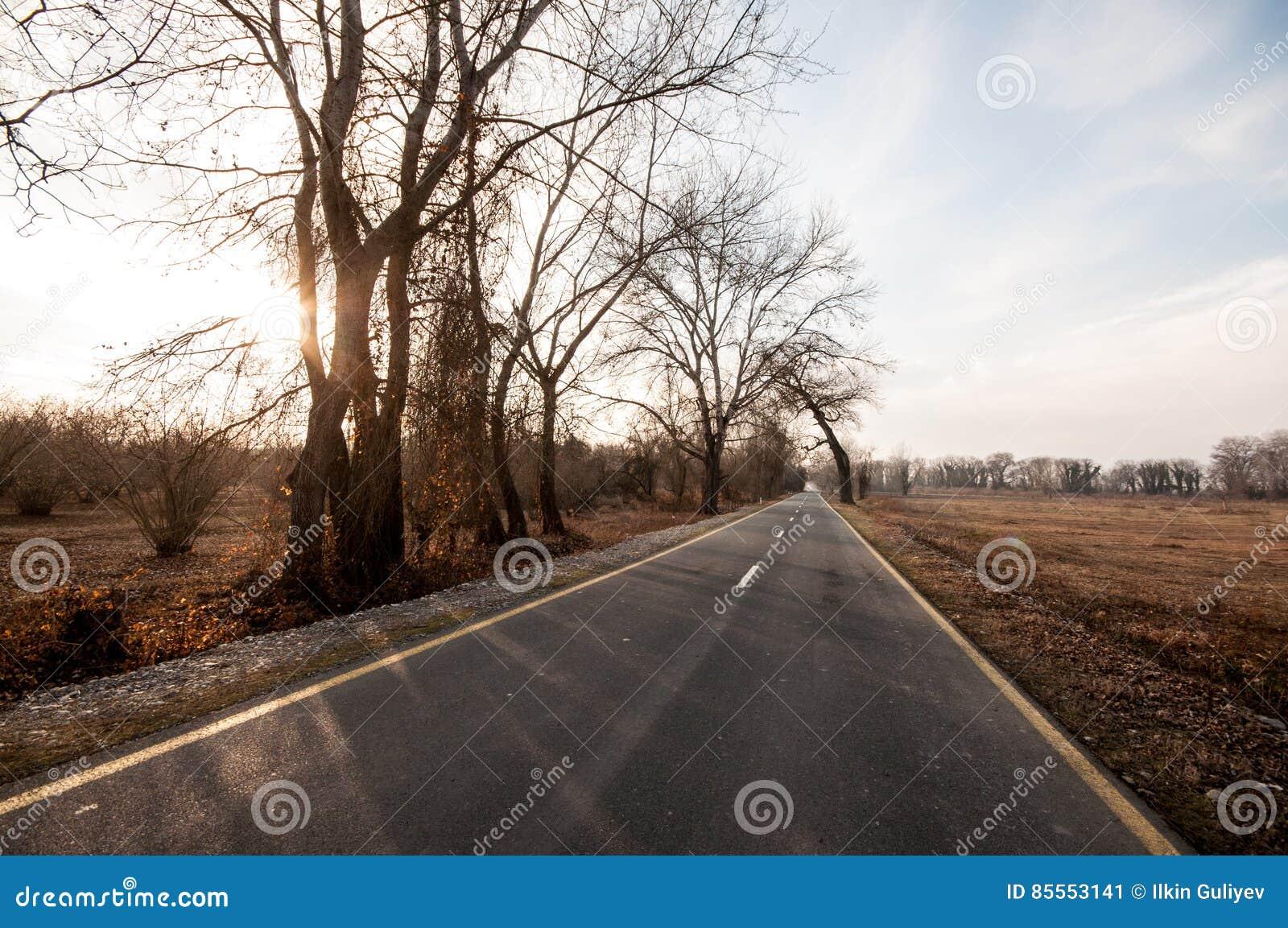 Schöne Landschaft der Landseitenstraße mit Bäumen in der Winterzeit bei Sonnenuntergang Aserbaidschan, Kaukasus, Sheki, Gakh, Zag
