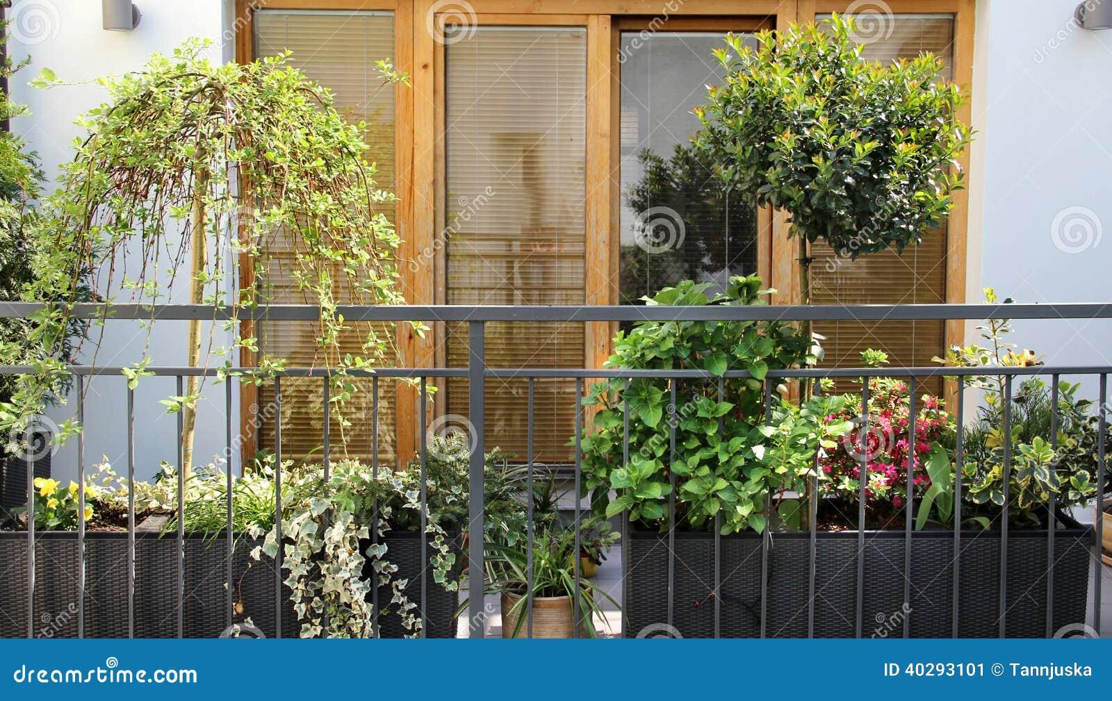 Schöne Moderne Terrasse Mit Vielen Blumen
