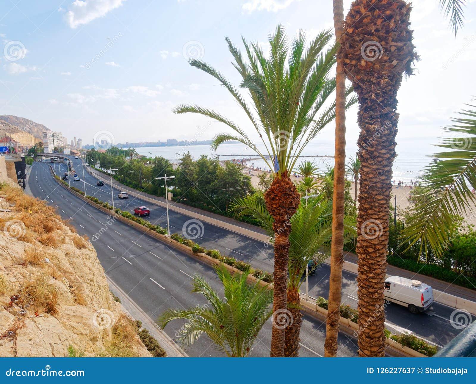 Schöne Palmen und Strand in Alicante spanien
