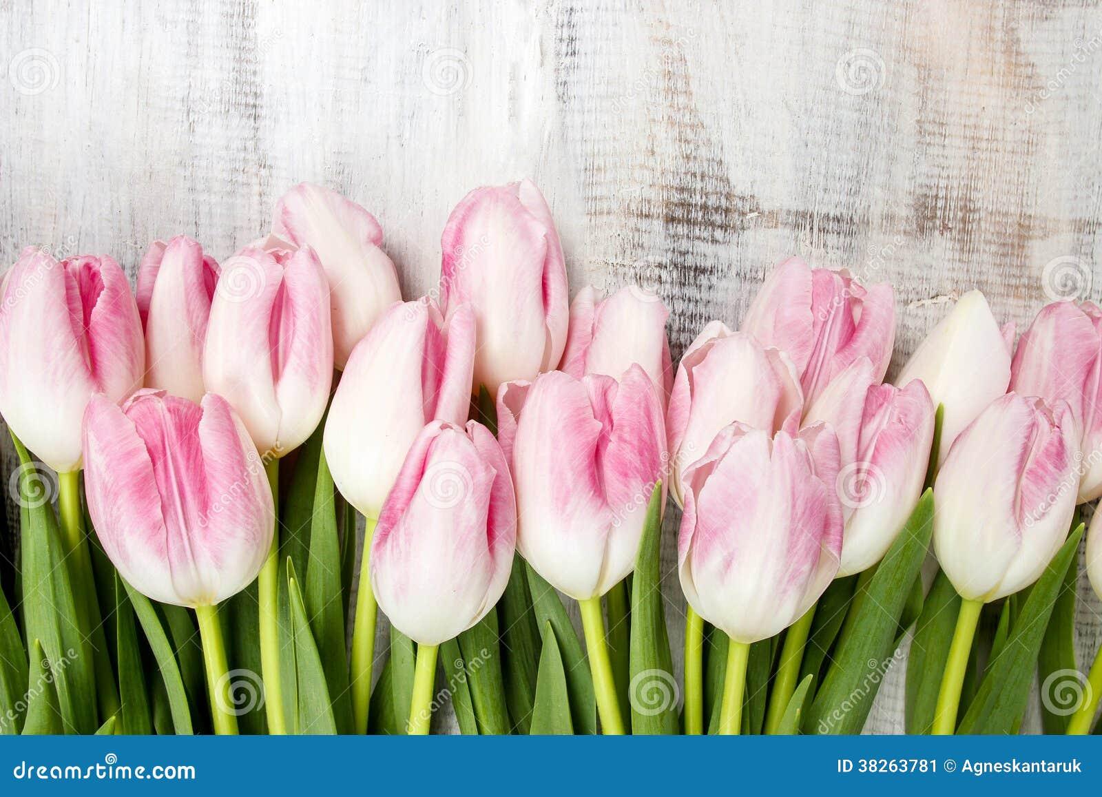 sch ne rosa und wei e tulpen auf h lzernem hintergrund. Black Bedroom Furniture Sets. Home Design Ideas
