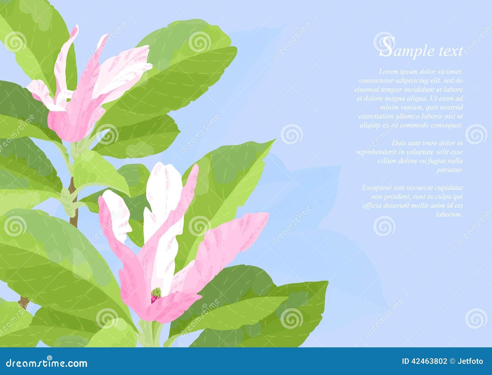 Schöne rosafarbene Magnolie-Blumen