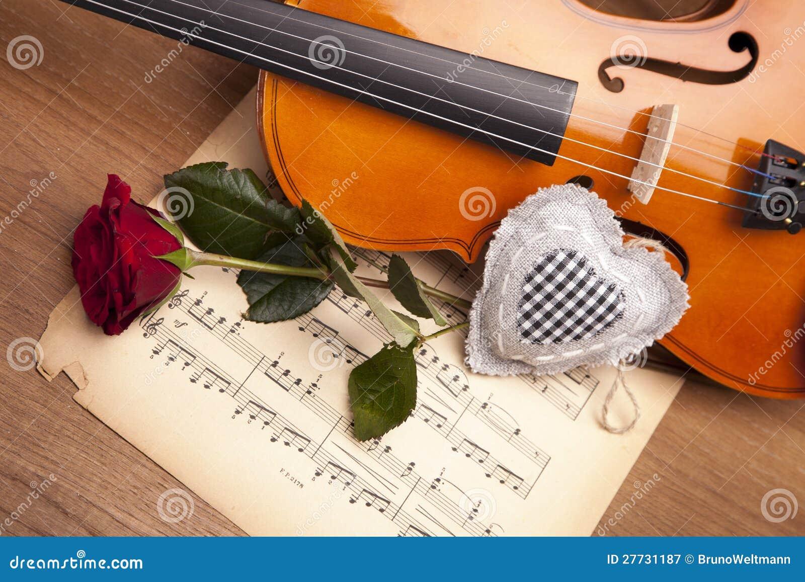 Schöne Rosen und Violine!