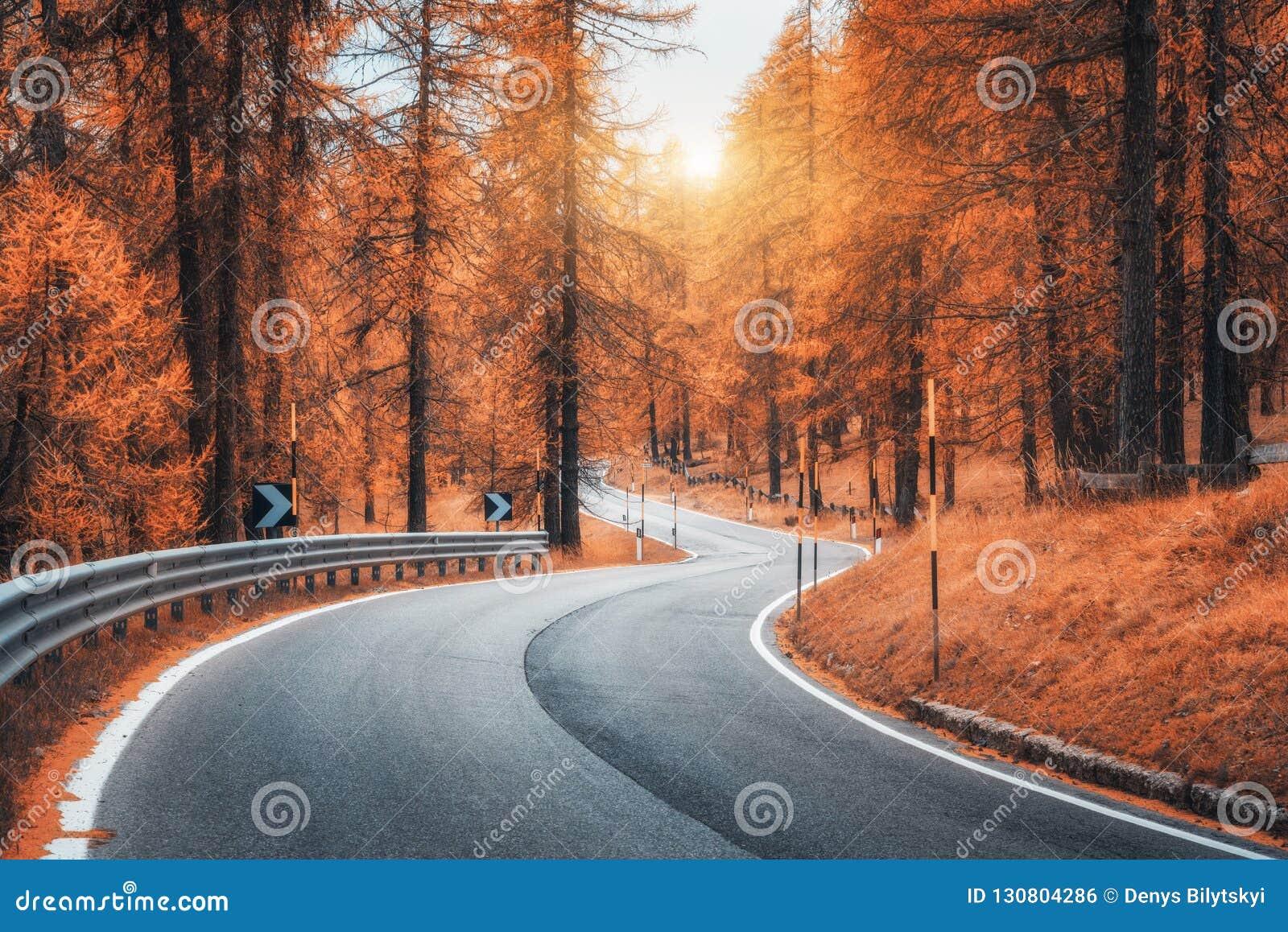 Schöne wickelnde Gebirgsstraße im Herbstwald bei Sonnenuntergang