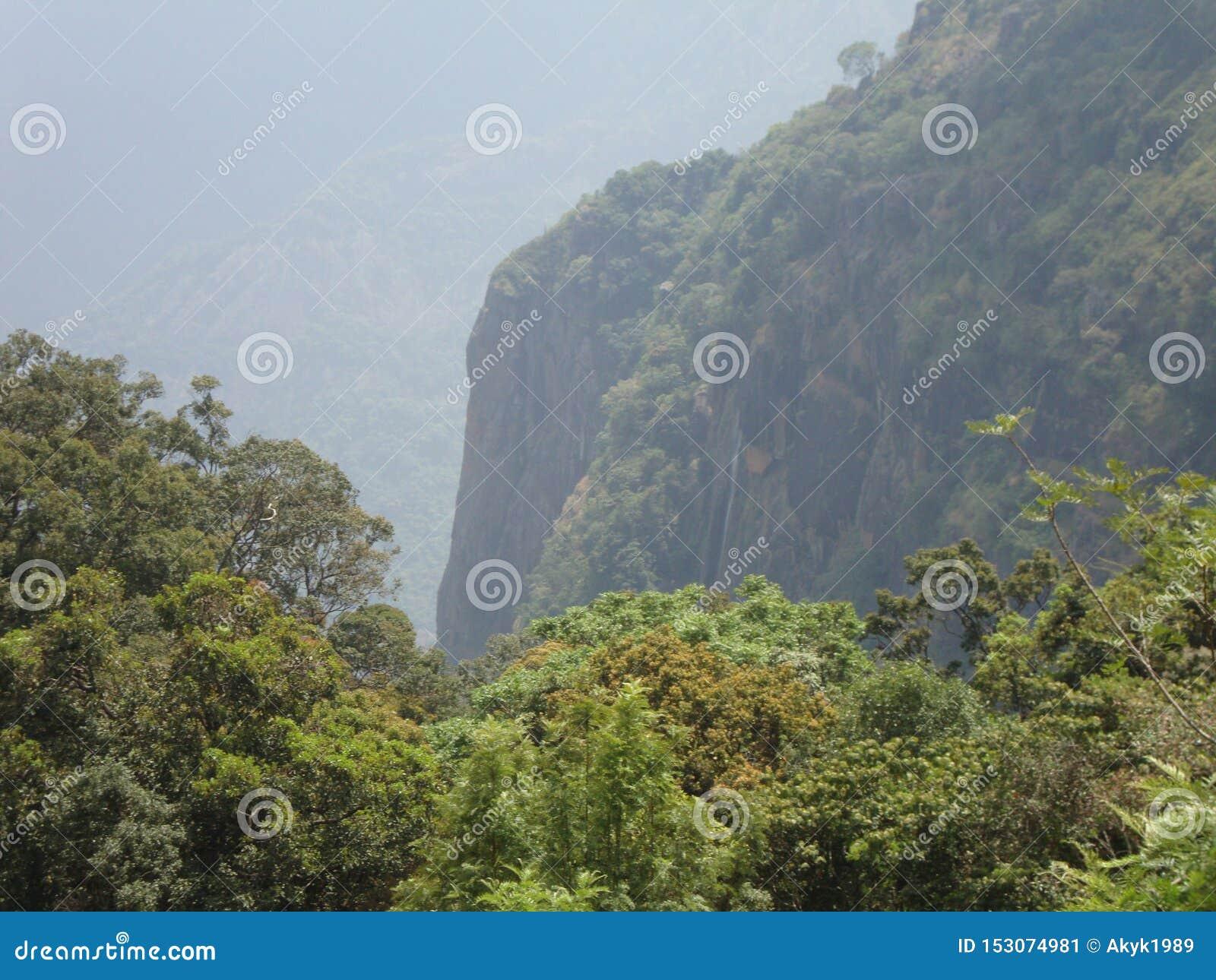 Schöner Berg mit dem Grün
