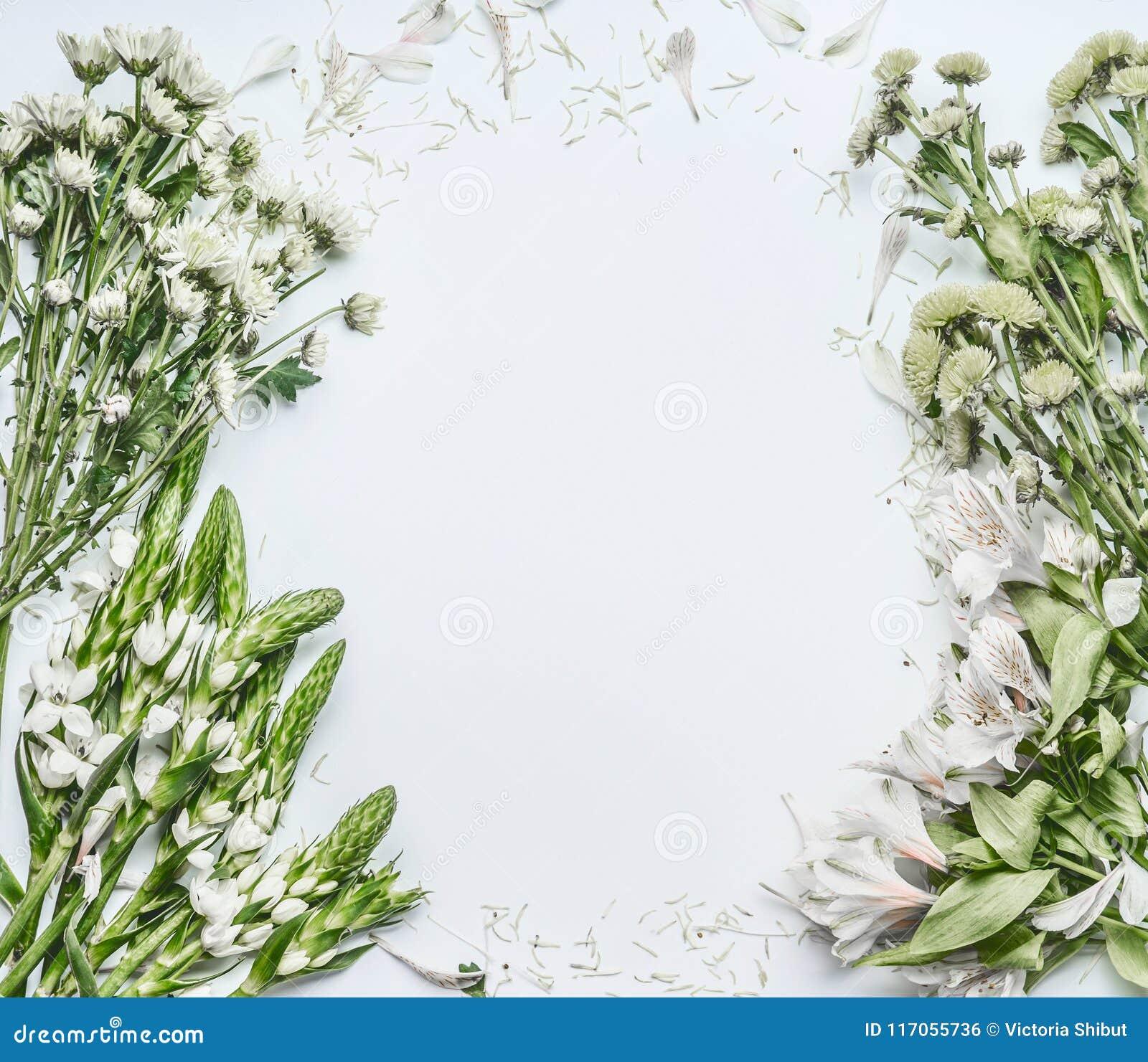 Schöner Blumenrahmenplan mit grünen Blumen für den Blumenstrauß, der auf weißem Hintergrund macht