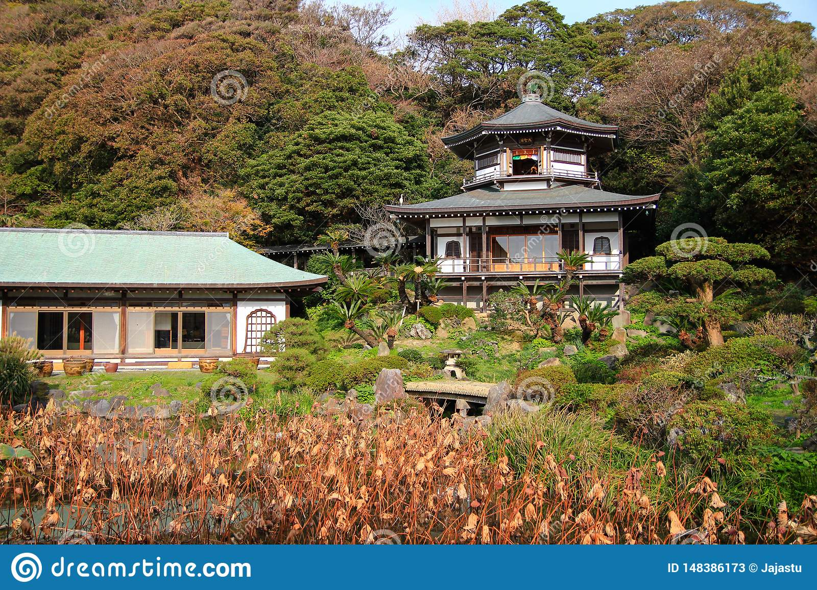 Sch?ner, bunter japanischer Garten, Kamakura
