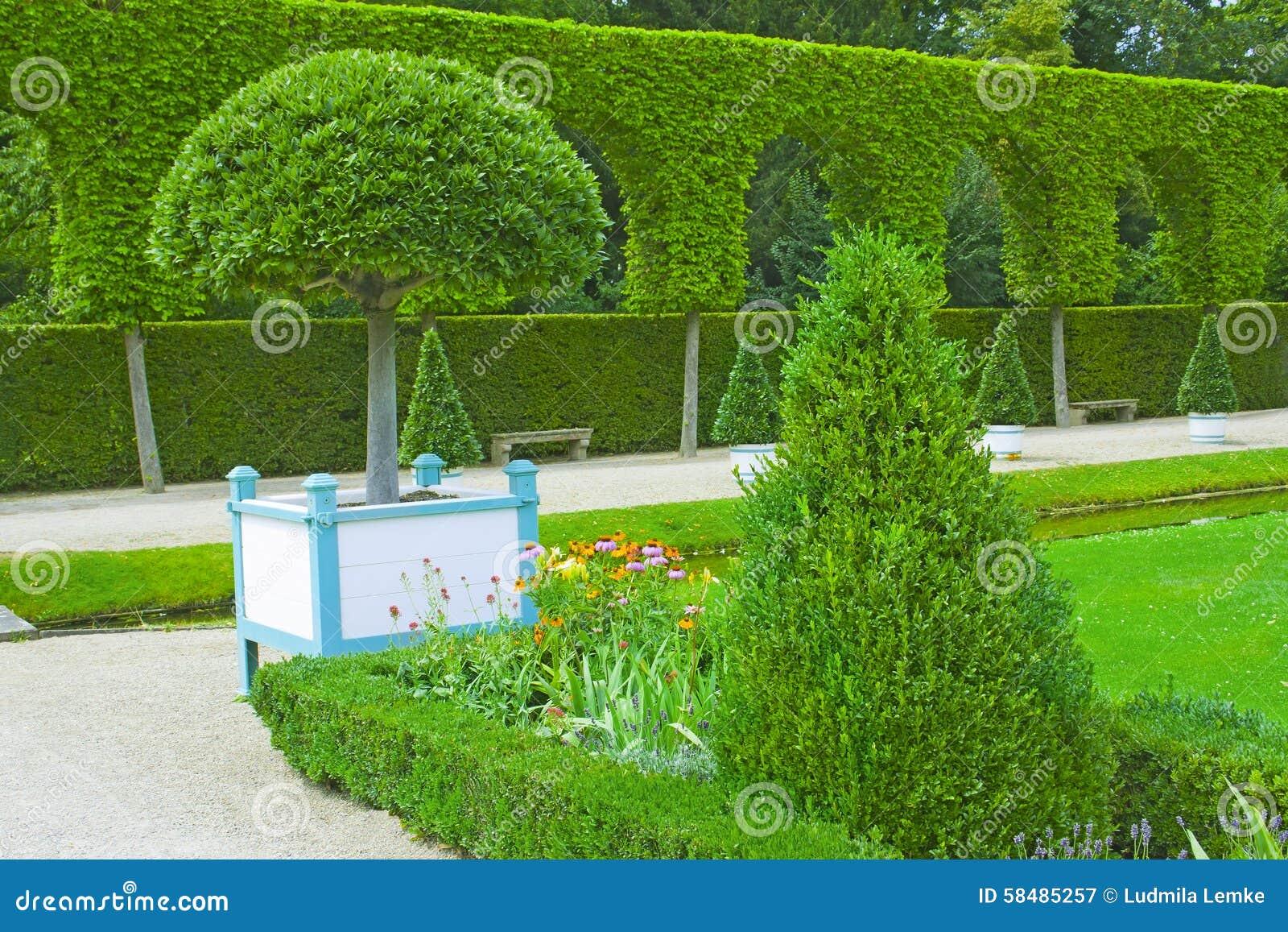 Download Schöner Garten Mit Grünen Hecken Stockbild   Bild Von Büsche,  Umgebung: 58485257