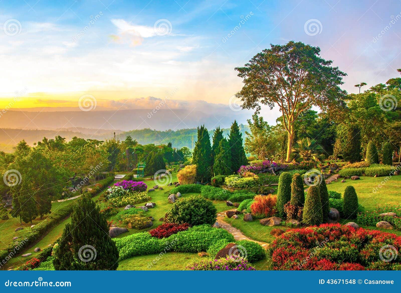 Schöner Garten Von Bunten Blumen Auf Hügel
