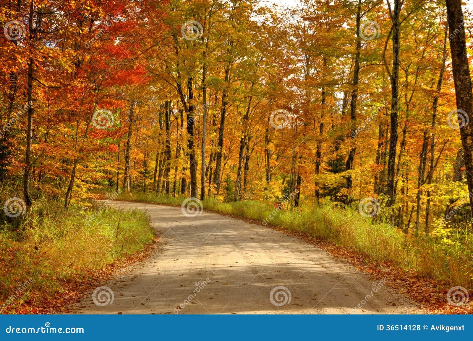 Schöner Gehweg herein mit Fallfarben in Michigan USA