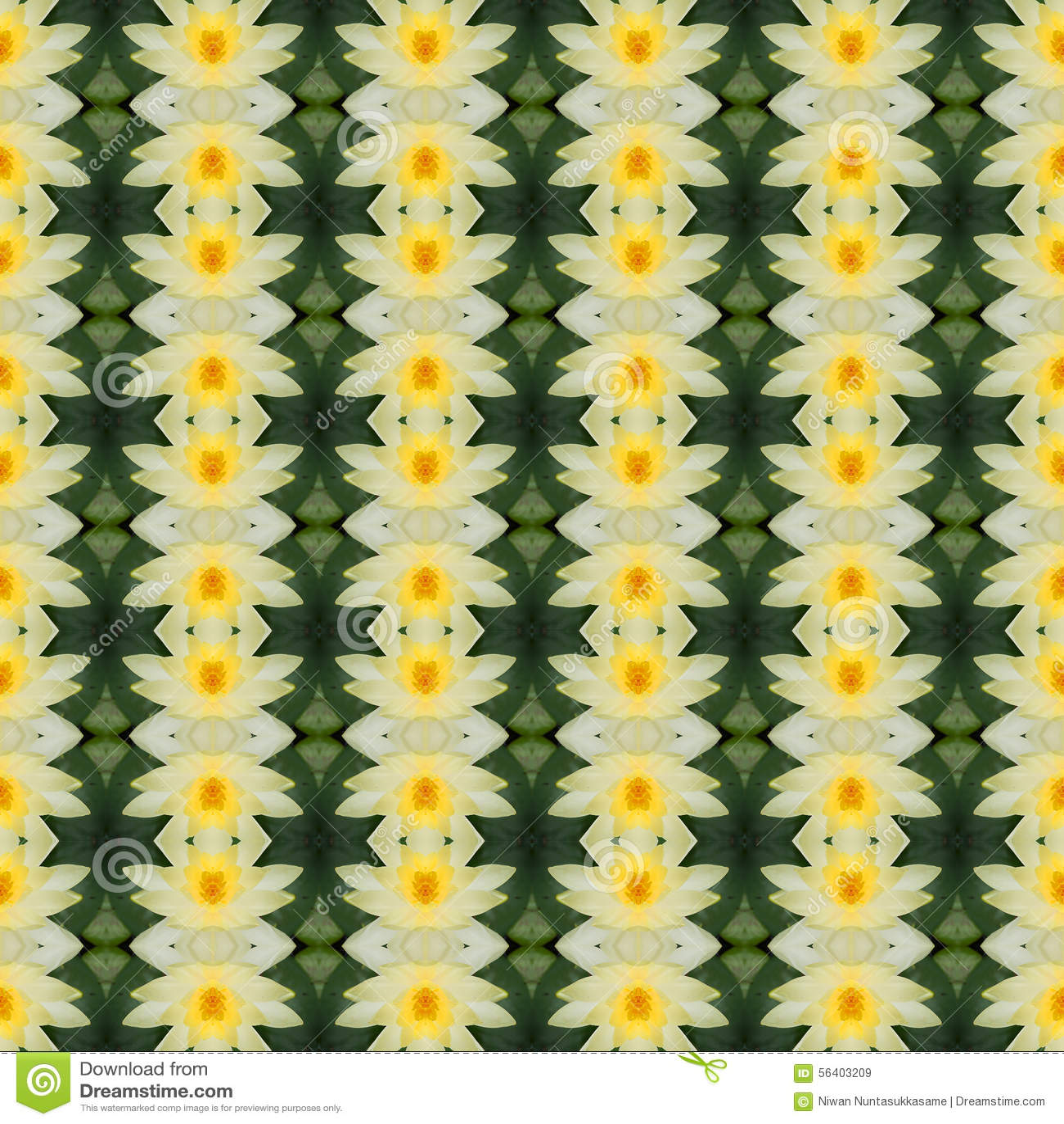 Schöner gelber Lotos in voller Blüte nahtlos