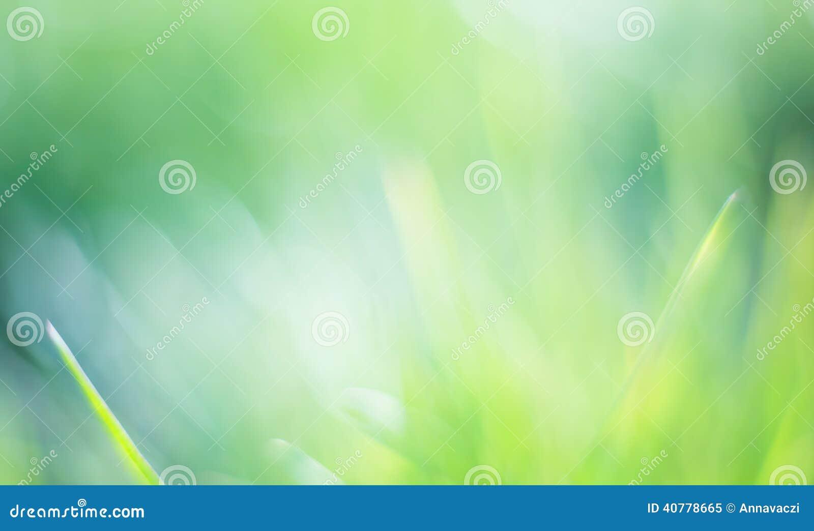 Schöner grüner bokeh Hintergrund