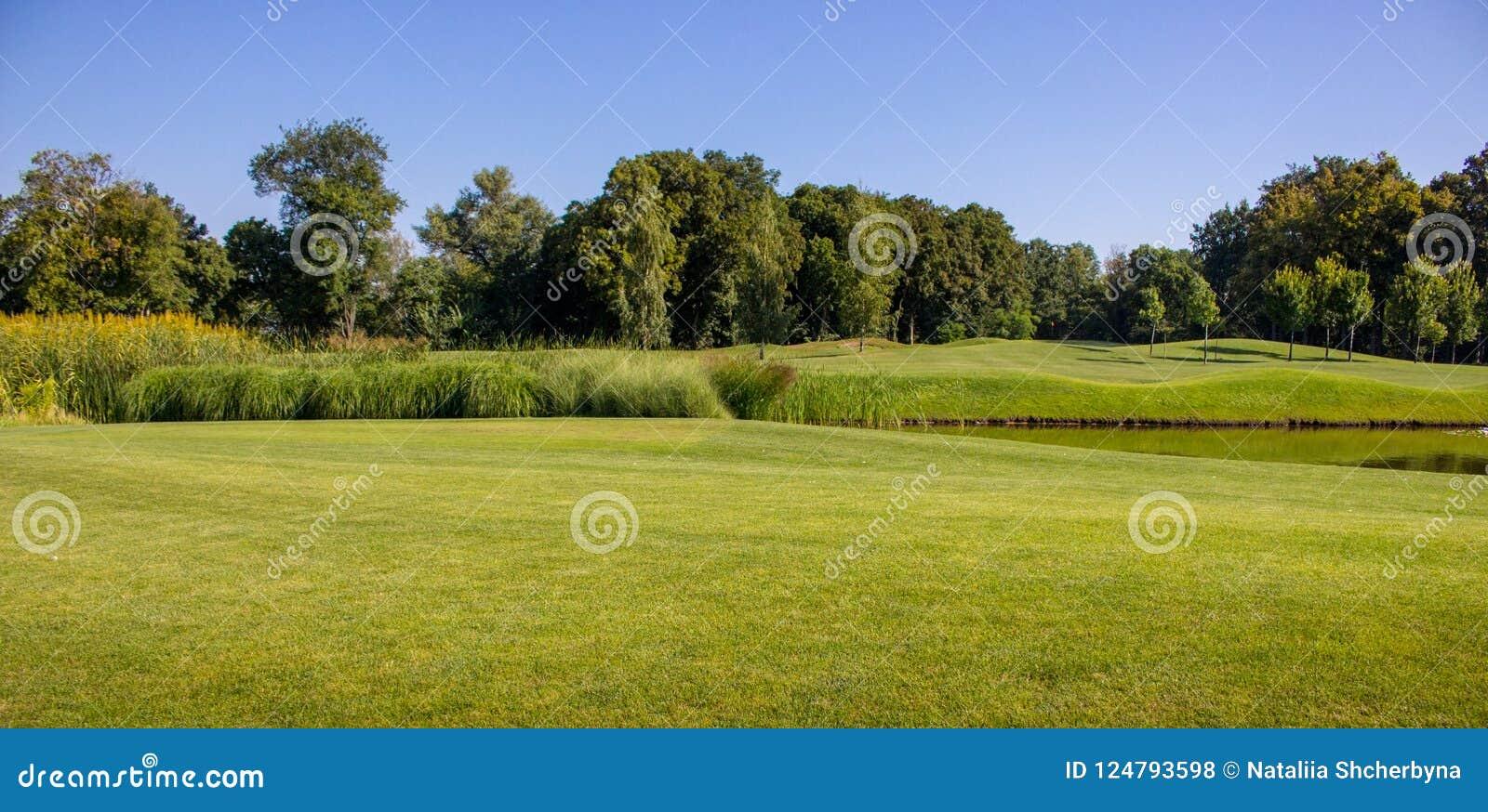 Schöner grüner Sommerweg mit Teich und Bäume gegen klaren blauen Himmel Frühling und Sommerparklandschaft Golffeld mit See