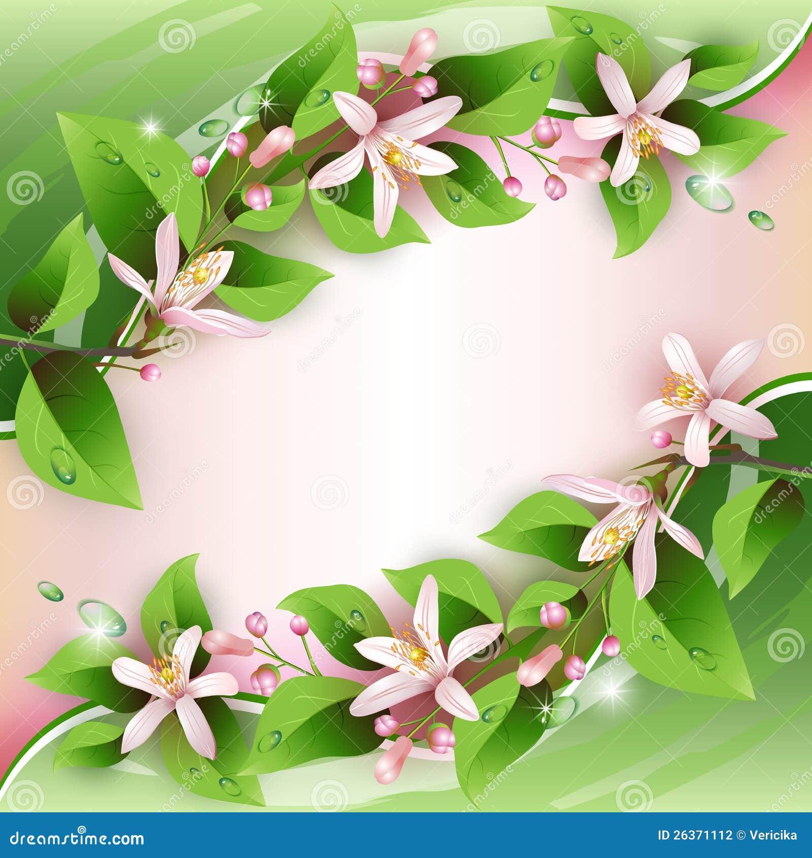 Schöner Hintergrund mit empfindlichen Blumen
