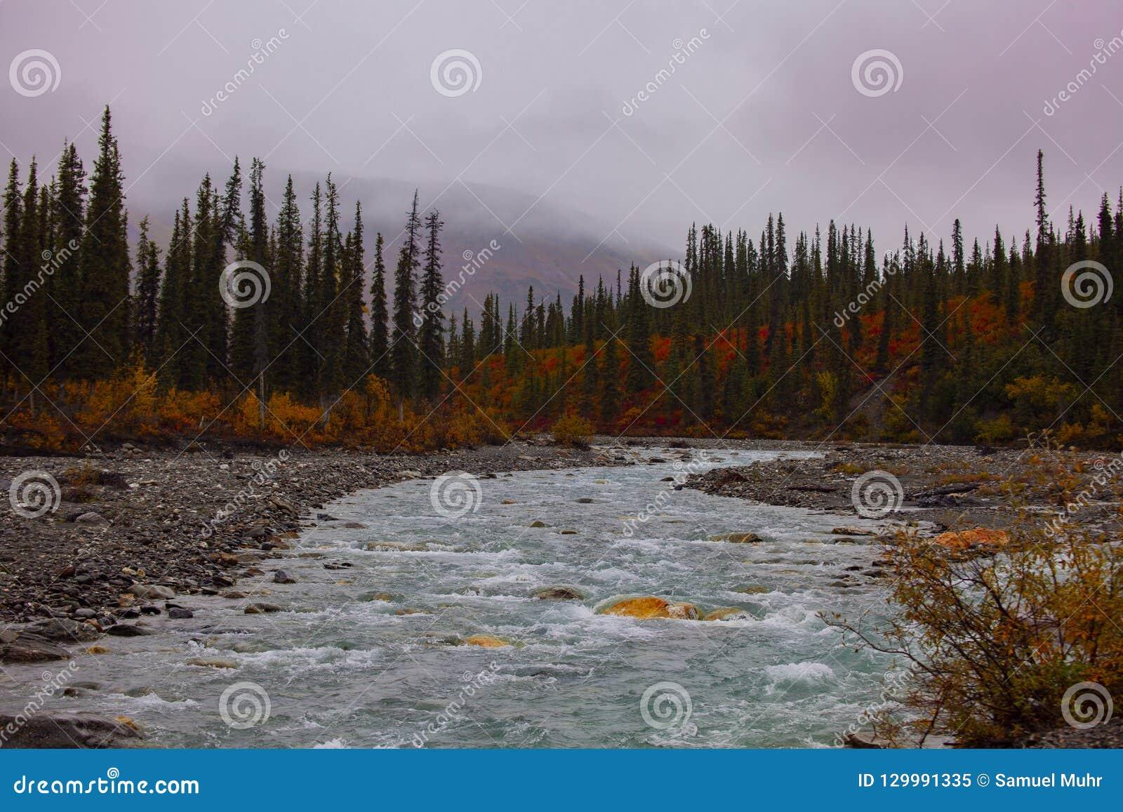 Schöner Nebenfluss in Alaska