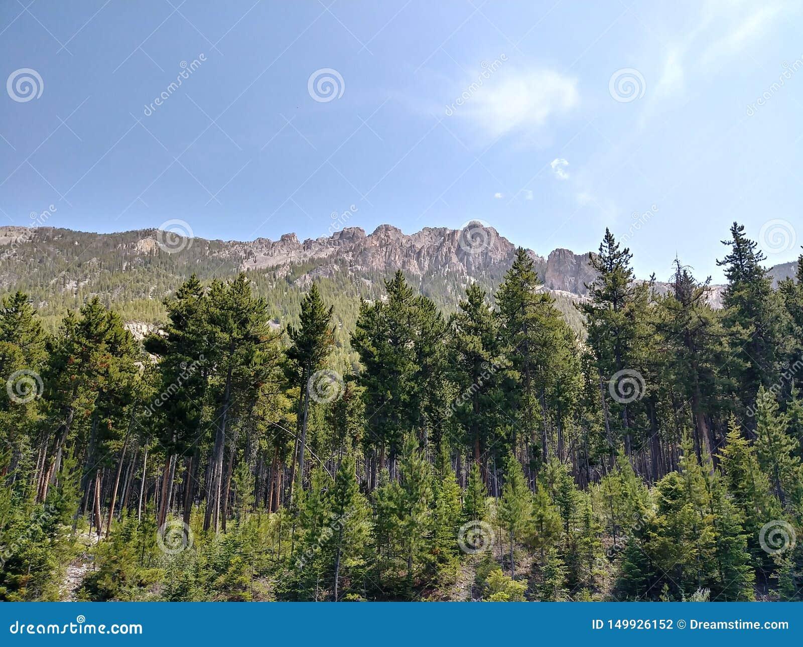 Schöner Rocky Mountains, beim Fahren zu Yellowstone Nationalpark