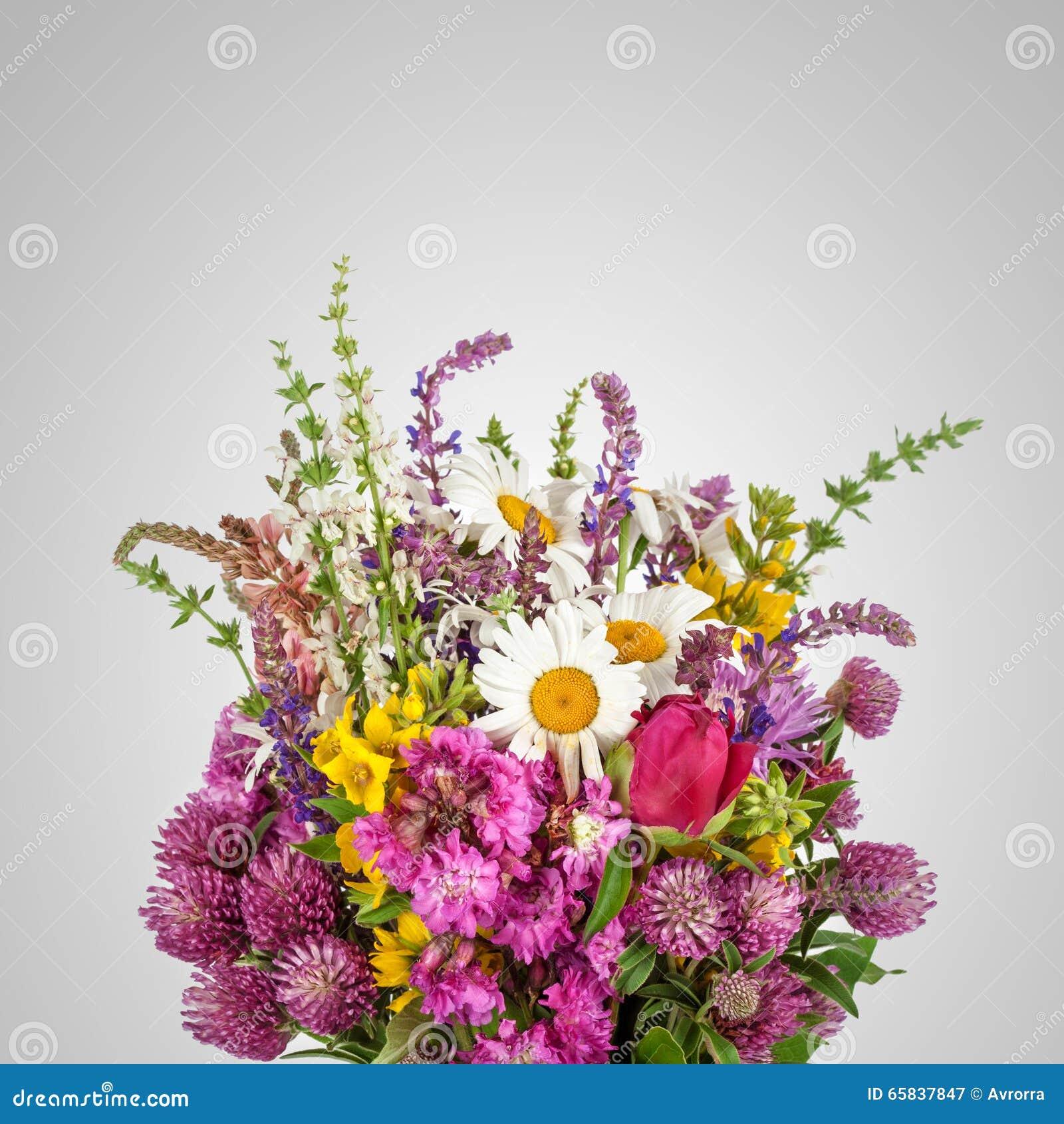 sch ner wilde blumen blumenstrau wildflowers stockbild. Black Bedroom Furniture Sets. Home Design Ideas
