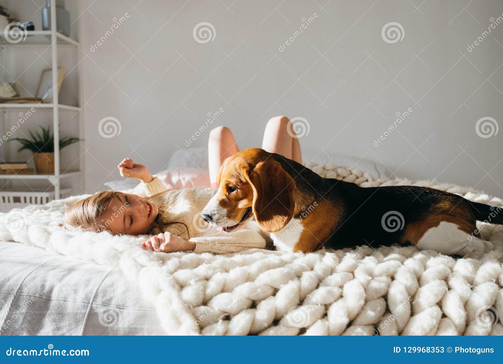 Schönes junges kaukasisches Mädchen, das mit ihrem Welpenspürhundhund spielt