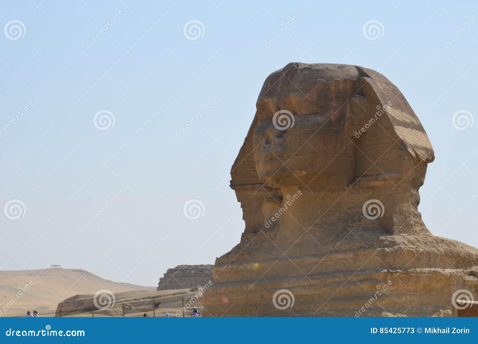 Schönes Profil der großen Sphinxes